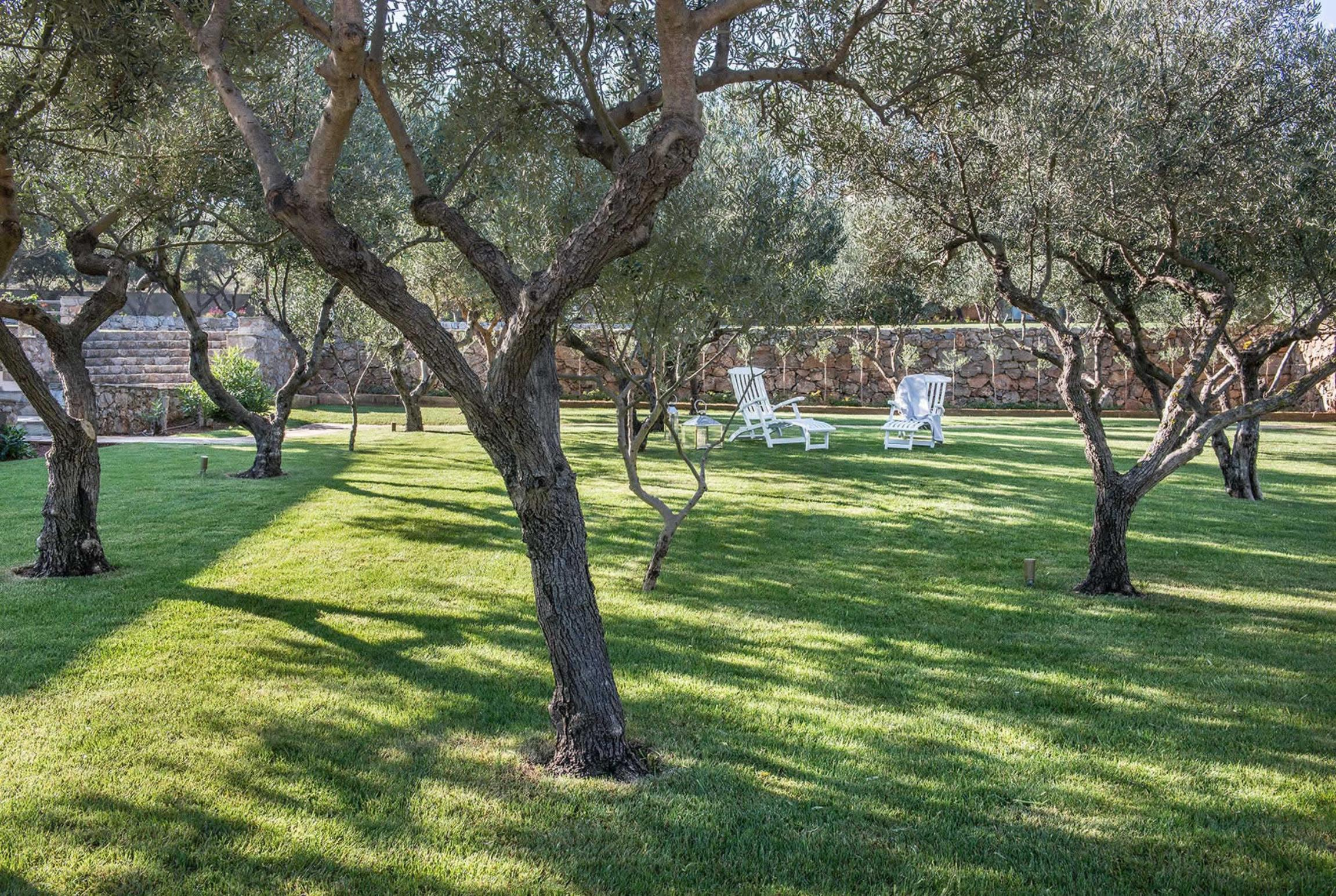 Ferienhaus Oleander (2702167), Stalos, Kreta Nordküste, Kreta, Griechenland, Bild 29